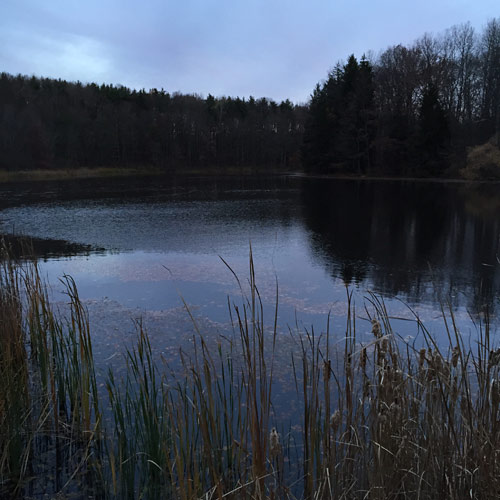 Sylvan Pond at dusk